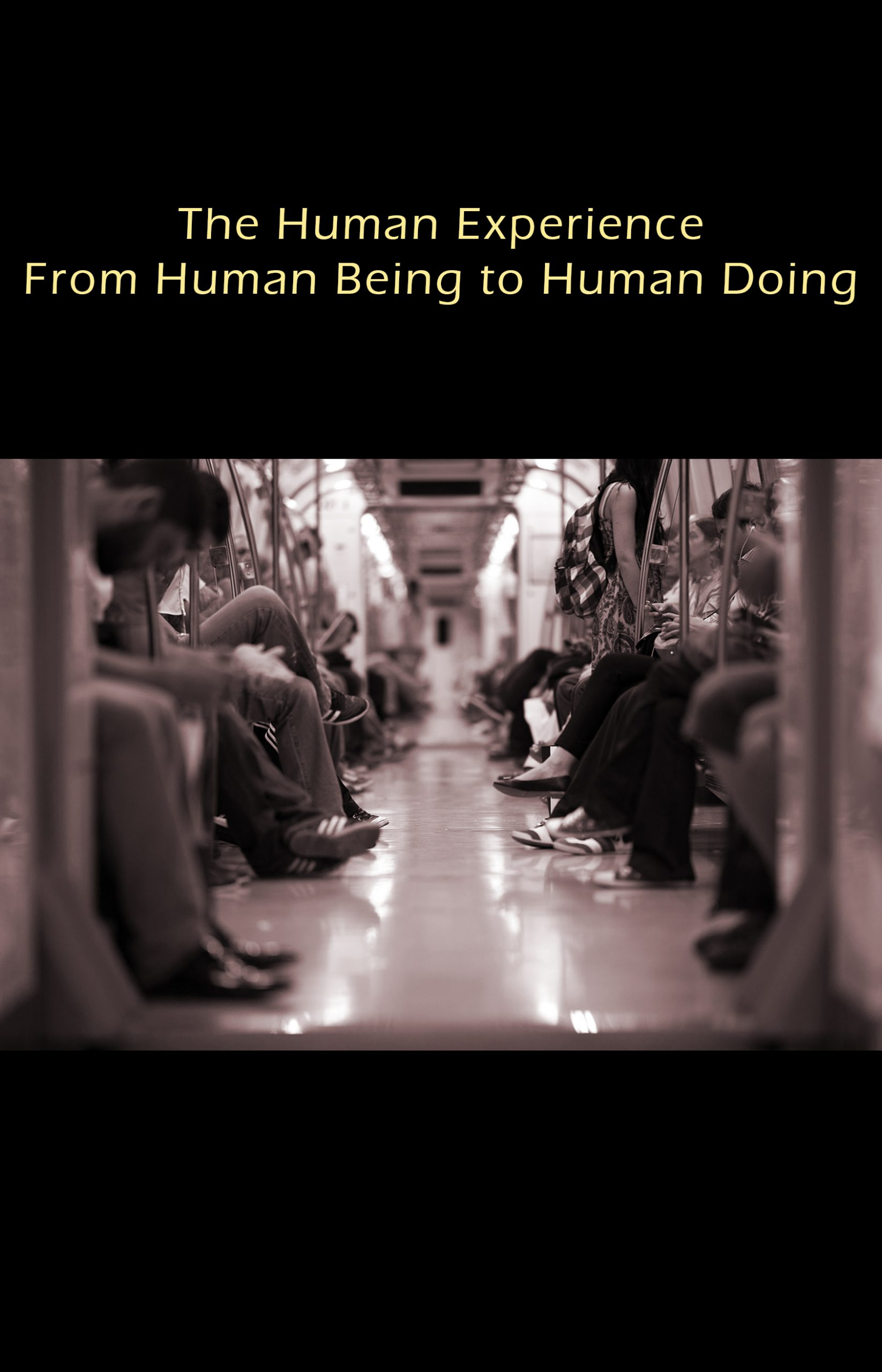Cover image for The Human Experience: From Human Being to Human Doing
